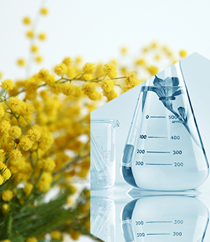 Salicylic acid and Acacia gum complex